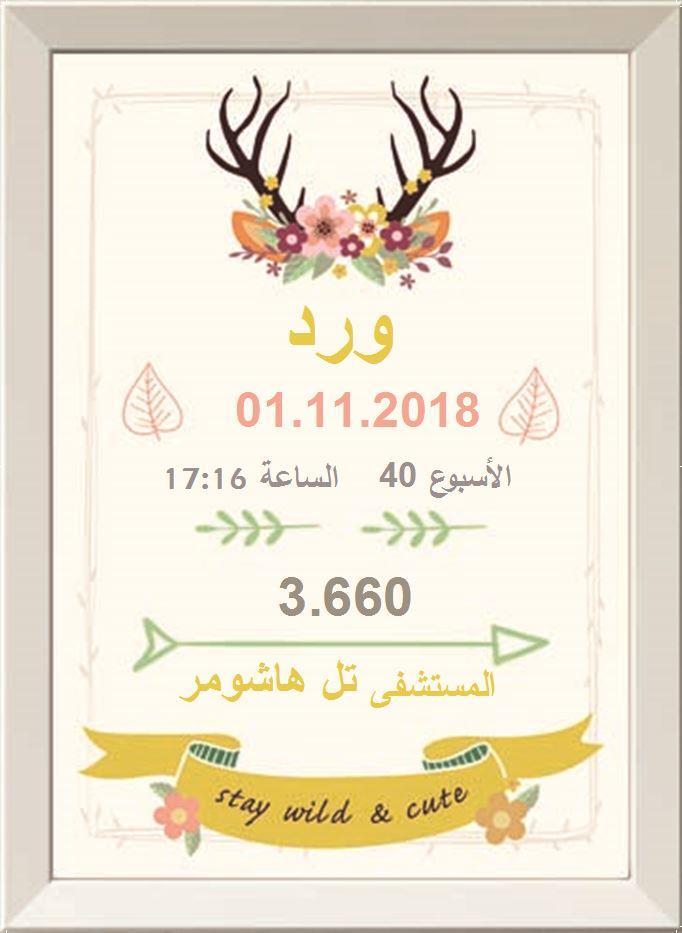 شهادة ميلاد مزخرفة  (תעודות לידה בערבית) - الغزال الساحر (הצבי הקסום בערבית)