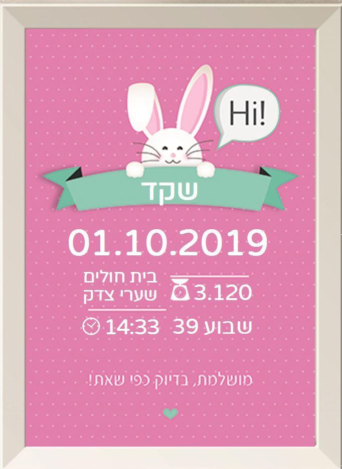 תעודות לידה מעוצבות - ארנבי ורוד