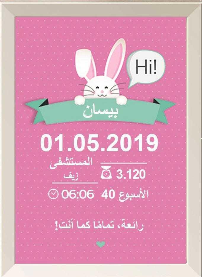 شهادة ميلاد مزخرفة  (תעודות לידה בערבית) - أرنوبي زهري (ארנבי ורוד בערבית)