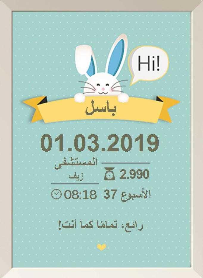 أرنوبي أزرق (ארנבי כחול בערבית)