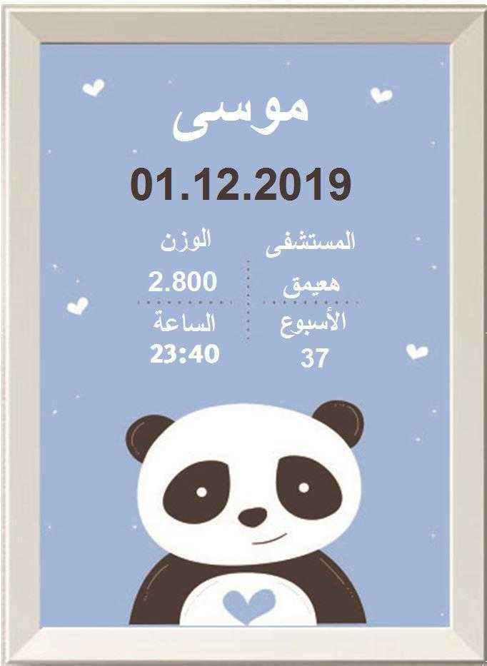 פנדה בכחול בערבית