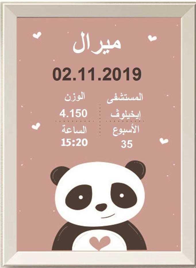 شهادة ميلاد مزخرفة  (תעודות לידה בערבית) - פנדה בורוד בערבית