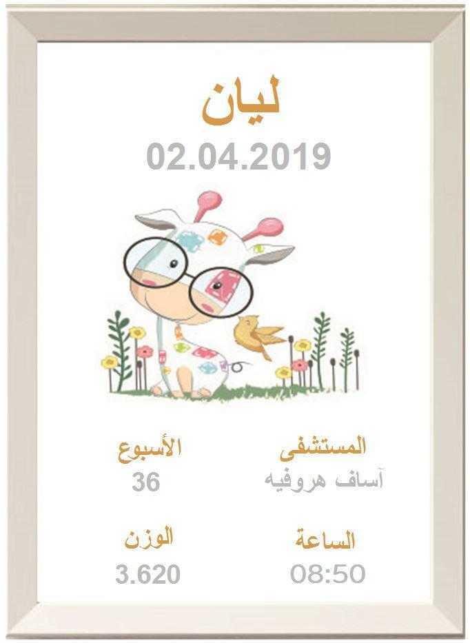 פרה במשקפיים בערבית