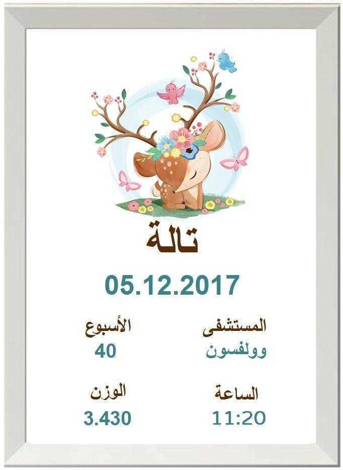 شهادة ميلاد مزخرفة  (תעודות לידה בערבית) - הצבי החמוד בערבית