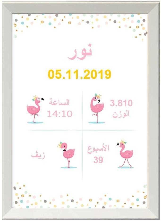 شهادة ميلاد مزخرفة  (תעודות לידה בערבית) - פלמינגו חמוד בערבית