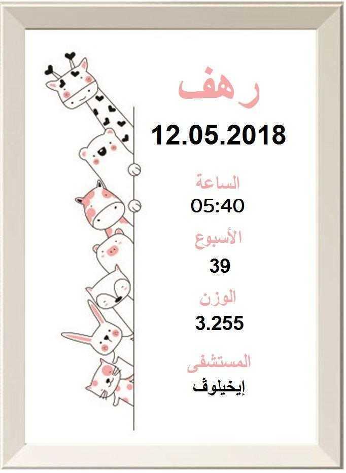 מציצים בורוד בערבית
